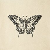Engravings, Butterfly Cream