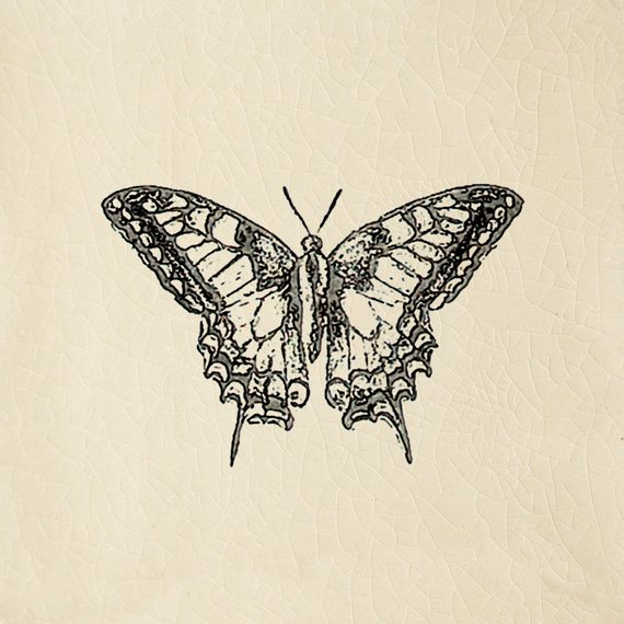 Engravings, Butterfly Cream (100mm x 100mm)