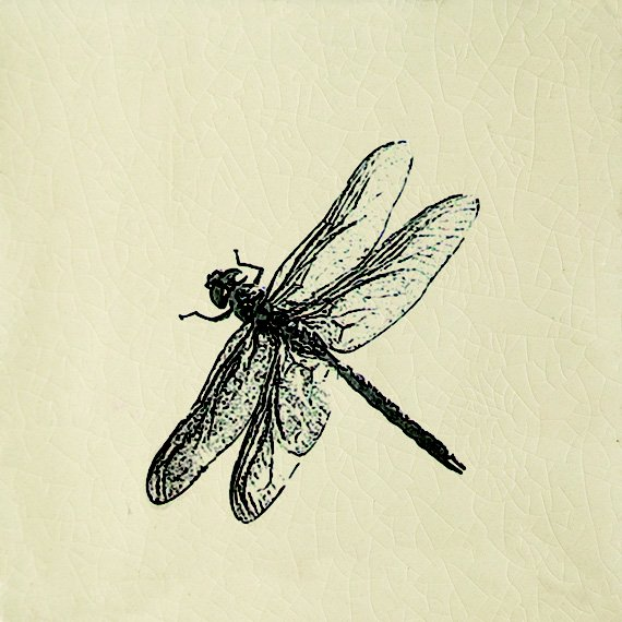 Engravings, Dragonfly Cream (100mm x 100mm)